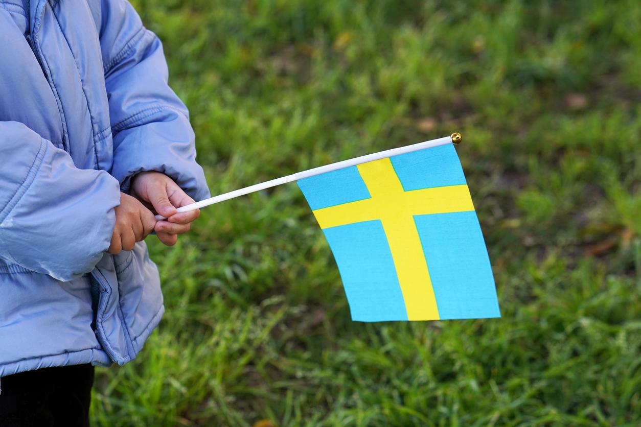 Svensk flagga © Igor Vershinsky/iStock